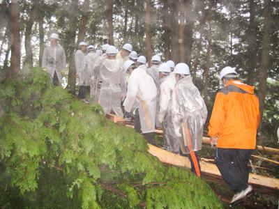 森林保全整備体験